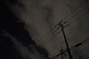 20111122 015.jpg